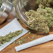 La lutte contre l'usage de cannabis s'automatise, «au détriment des mesures sanitaires», estime l'OFDT