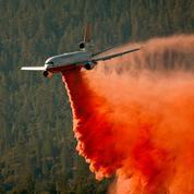 En Californie, un séquoia se consume encore après un feu de forêt de l'été 2020