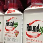 Procès du désherbant Roundup: une condamnation de Monsanto (groupe Bayer) confirmée en appel en Californie
