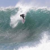 Australie : un surfeur décède après avoir été attaqué par un requin