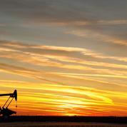 Le pétrole sous la pression de l'offre iranienne, des stocks américains et d'une demande fragilisée