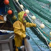 Action symbolique de pêcheurs contre «l'invasion de la flotte industrielle néerlandaise»