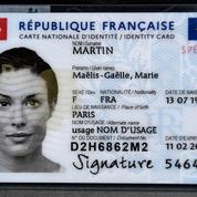 «Contre l'invasion du globish, légiférons pour rétablir le français comme seule langue de communication»