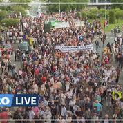 Des milliers de manifestants pour défendre les langues régionales, Bretons et Basques particulièrement mobilisés