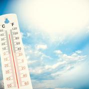Canicules: plus du tiers des décès attribuables au réchauffement climatique, selon une étude