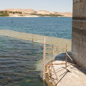 La sécheresse menace le nord-est syrien de catastrophe humanitaire