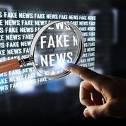 «Plutôt que de censurer les fake news ,lançons des offensives informationnelles»