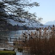 Haute-Savoie : un cadavre découvert dans le lac d'Annecy