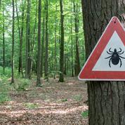 Existe-t-il vraiment une forme chronique de la maladie de Lyme ?