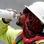 «Trop chaud pour travailler» : quel est l'impact de la canicule sur la productivité ?