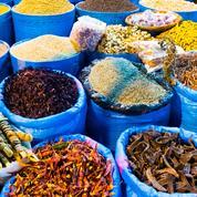 Street food à Tunis : les bonnes adresses du Figaro