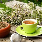 Ces plantes qui soignent les troubles du sommeil