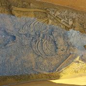 Un sarcophage de l'époque mérovingienne ouvert en Haute-Marne