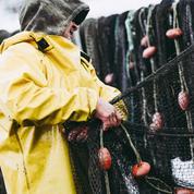 Feu vert de Jersey pour prolonger les licences de pêche, «bouffée d'air frais» pour les bateaux français