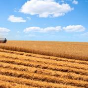Front commun de la «famille agricole» pour aider les agriculteurs en souffrance