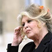Brigitte Bardot condamnée à 5000 euros d'amende pour injure à l'encontre du patron des chasseurs