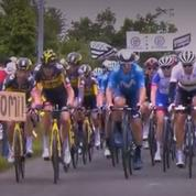 Tour de France : les organisateurs retirent leur plainte contre la spectatrice