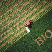 Le bio a poursuivi sa progression, malgré la pandémie