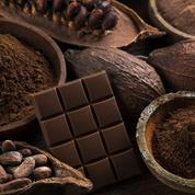 Barry Callebaut voit ses ventes rebondir sur neuf mois grâce au chocolat