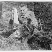 Jean-Michel Derex : «Les animaux au front ont joué un rôle d'échappatoire pour les soldats»