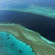 Australie : les perspectives pour la Grande Barrière de corail restent «très mauvaises»