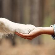 Maladies psychiques : adopter un chien pour gagner en autonomie