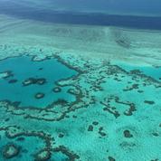 Grande Barrière de corail : l'Australie évite la liste des sites en péril