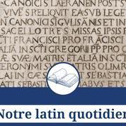 Hic, ce mot latin du quotidien