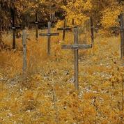 En Normandie, le «cimetière des fous» bientôt remplacé par une route à quatre voies