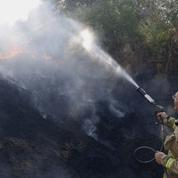 Des feux de brousse en Israël provoqués par des ballons incendiaires de Gaza