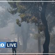 Incendie à Athènes : un apiculteur de 64 ans arrêté, le feu est désormais «sous contrôle»