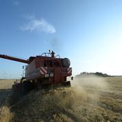 Le blé poursuit sa hausse, les moissons entravées par la météo