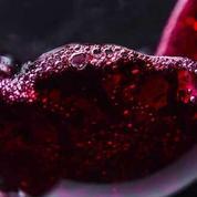 La sélection de 10 vins rouges naturels à moins de 15 euros du Figaro Vin