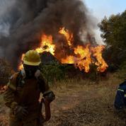 La Grèce en proie aux flammes, le sol de la Turquie et de Chypre à plus de 50°C