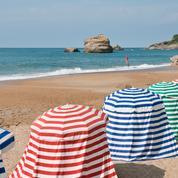 Une algue toxique a fait fermer temporairement des plages de la côte basque