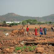 Éthiopie : au moins 12 civils tués dans une région limitrophe du Tigré