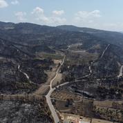 Grèce : les incendies qui ont ravagé plus de 100.000 hectares sont enfin maîtrisés, selon les pompiers