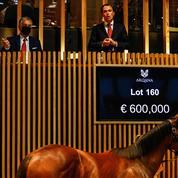 Ventes de yearlings à Deauville: le chiffre d'affaire dépasse les 40 millions d'euros