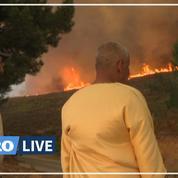 Incendies au Maroc : plus de 700 hectares brûlés, la mobilisation continue