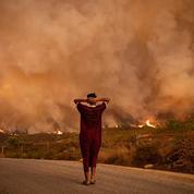 Crise climatique : la Terre ne cesse de brûler cet été