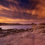 Chutes d'eau spectaculaires, féerie minérale, faune foisonnante... Les histoires naturelles du monde