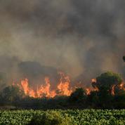 Incendies dans l'Aude, 90 ha brûlés, trafic interrompu sur l'A9