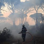 L'Hérault et le Vaucluse touchés par des incendies