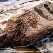 Une idole en bois de chêne érigée au IVe siècle exhumée en Irlande