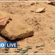 L'Irak, tragique croissant fertile du trafic des antiquités
