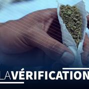 La légalisation du cannabis permettrait-elle vraiment de réduire le trafic illégal ?