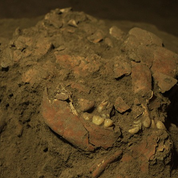 Un squelette indonésien serait apparenté à un groupe humain inconnu