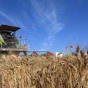 L'OMC appelle les pays à trouver un accord sur l'agriculture cette année