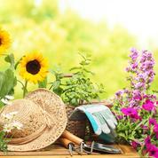 Que faire en été dans votre jardin ?