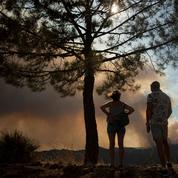 Espagne: des centaines de personnes évacuées après un feu de forêt